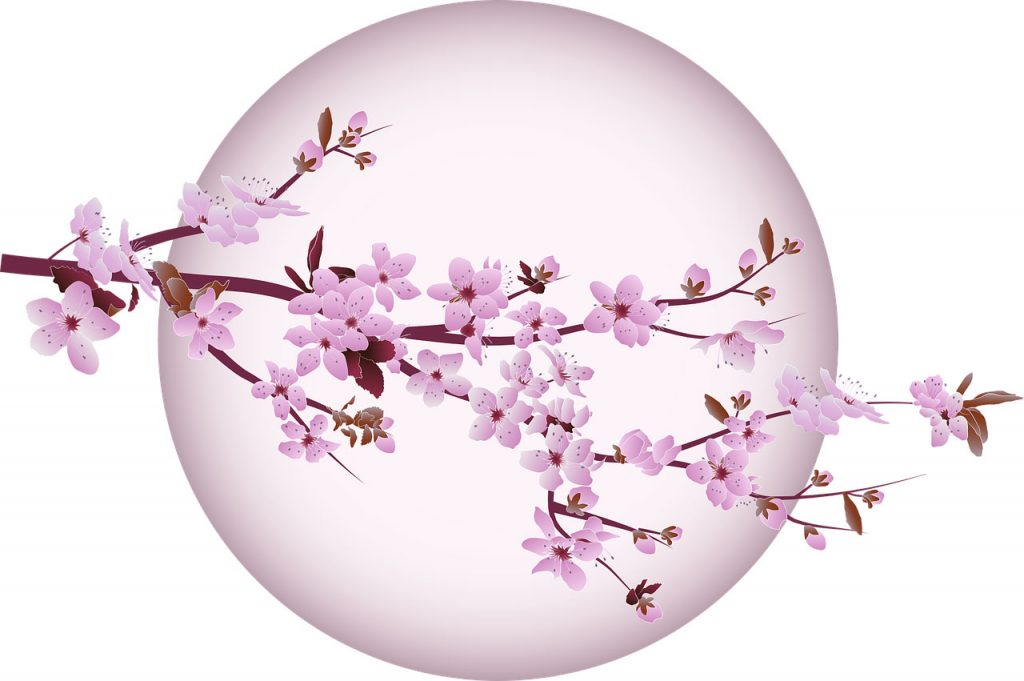 cherry blossom symbol of strength in challenging times